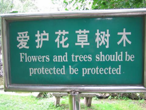 chinglish-environment