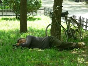sieste chinois herbe