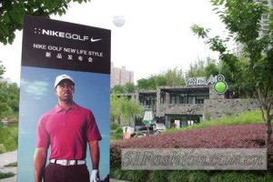 tiger wood chine