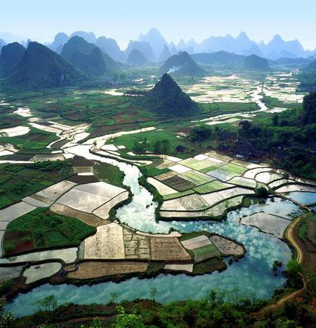 Guilin: les rizières