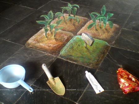 chinois plante