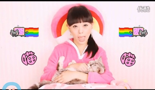 Super Cat Sister  : le buzz du jour en Chine