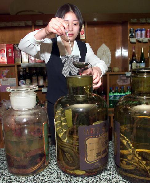 alcool de serpent chinois