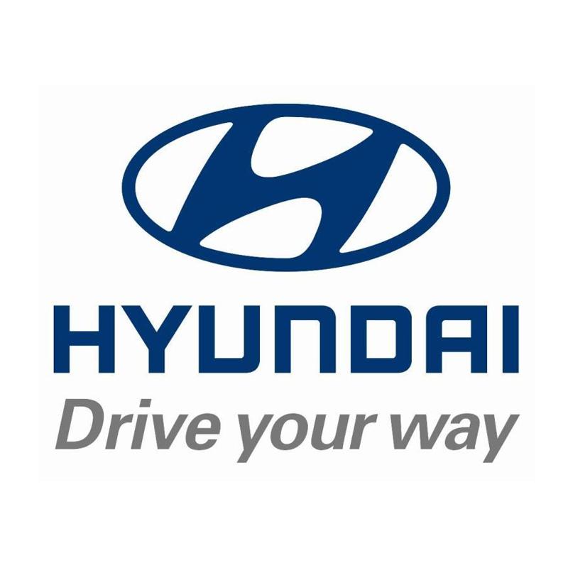 17-B-2010021994635-hyundai