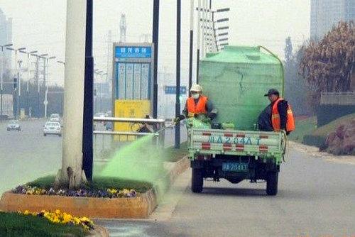 L'herbe la plus verte de Chine