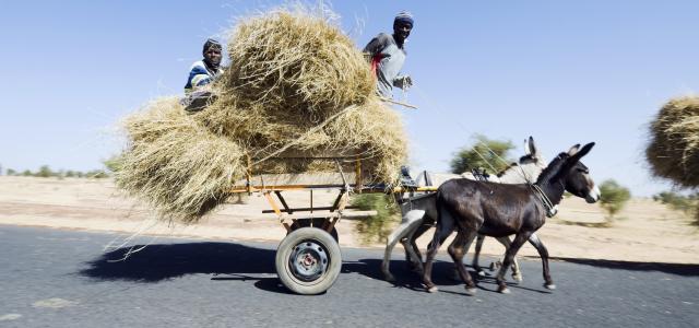 senegal pays touristique