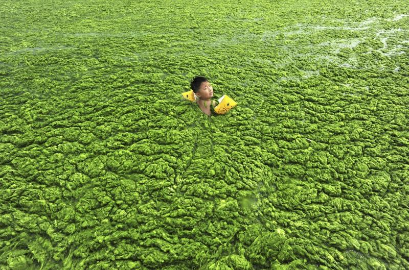 environnement + pollution en Chine
