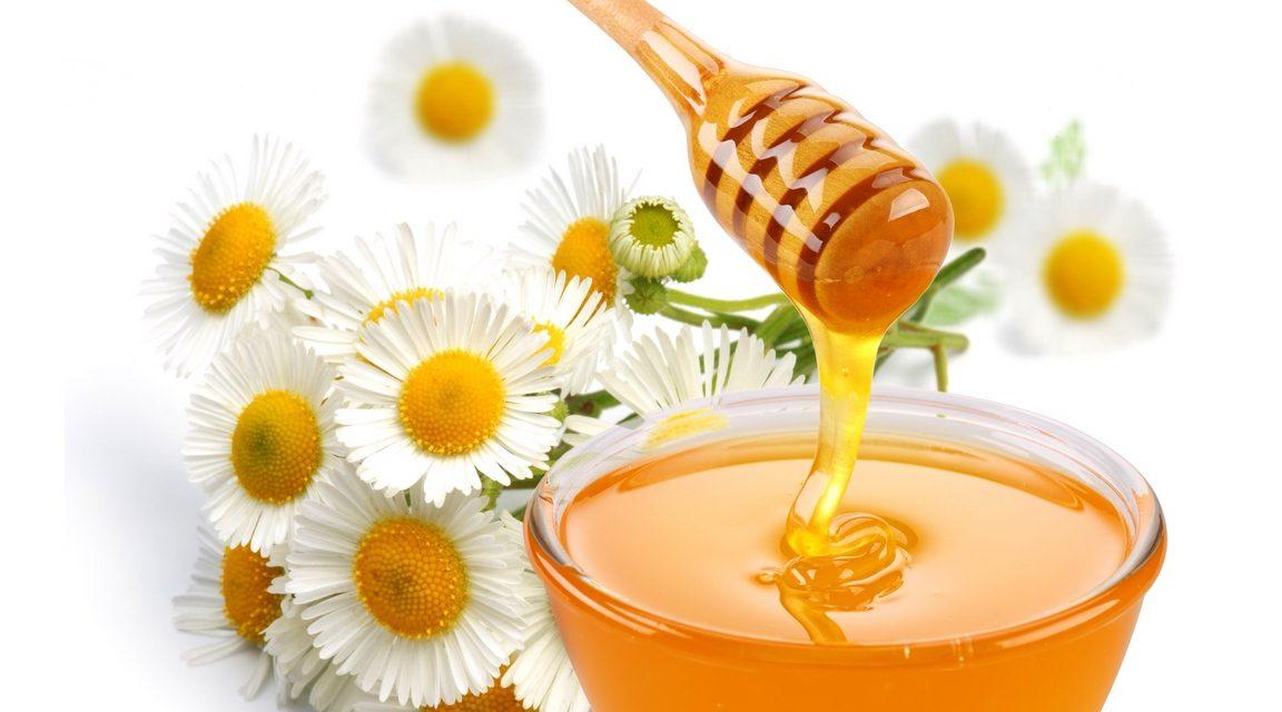 Le Miel en Chine : Ce Produit «vivant» tant apprécié