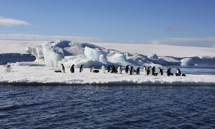 Cap sur l'Antarctique : une destination luxueuse en Chine