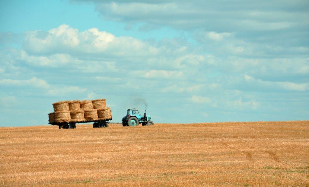 engrais chimique agricole