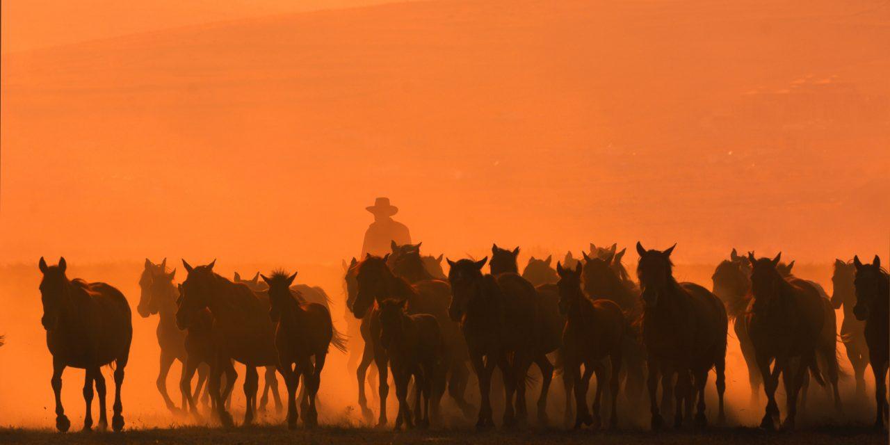 Le cowboy, modèle des publicités chinoises