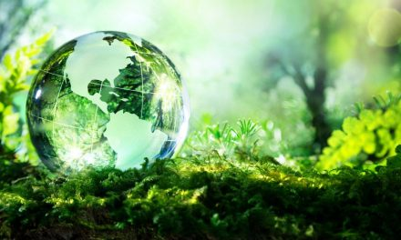 Le marché de l'écologie en Chine, une ouverture au monde