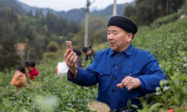 Du cultivateur de thé à l'influenceur en ligne, le rural livestreaming en Chine